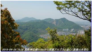 180428_myohoji_takatoriyama_kikus_2