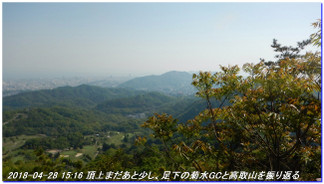 180428_myohoji_takatoriyama_kikus_6