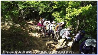 180428_myohoji_takatoriyama_kikusui