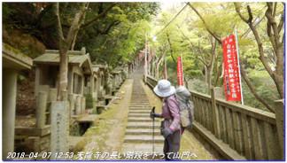 180407_kikusuiyama_nabebutayama_m_7