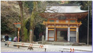 180407_kikusuiyama_nabebutayama_m_8