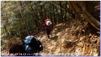 180407_kikusuiyama_nabebutayama_m_9