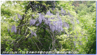180506_tyoishimiti1_kudoyama_kii_11