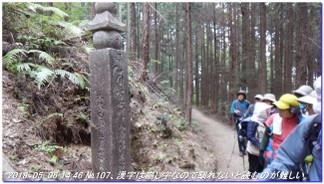180506_tyoishimiti1_kudoyama_kiih_7
