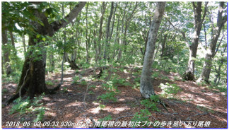180602_03_ishidagawadam_sanjyoda_10