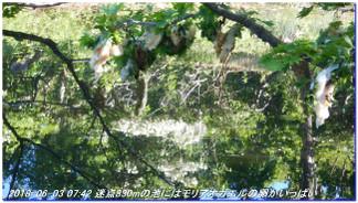 180602_03_ishidagawadam_sanjyodak_6