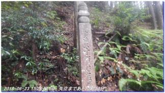 180623_okunointyoishi_daimon_kiihos