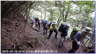 180519_kikusuiyama_nabebutayama_m_3