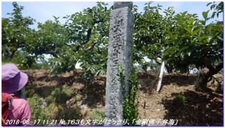 180617__tyoishimiti_kudoyama_kiih_4