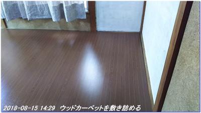 180815_tanakumi_04