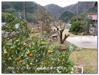 081227_kumanokodo_p1_011