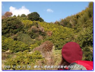 081228_kumanokodo_p2_022