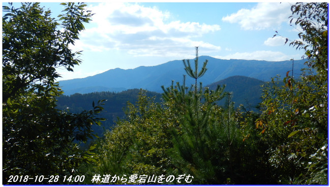 181028_sugisakanishione_shinkyomi_2