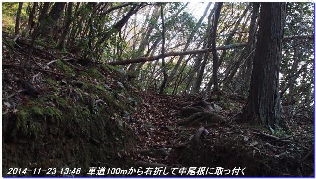 141123_nakaone_mizuo_01
