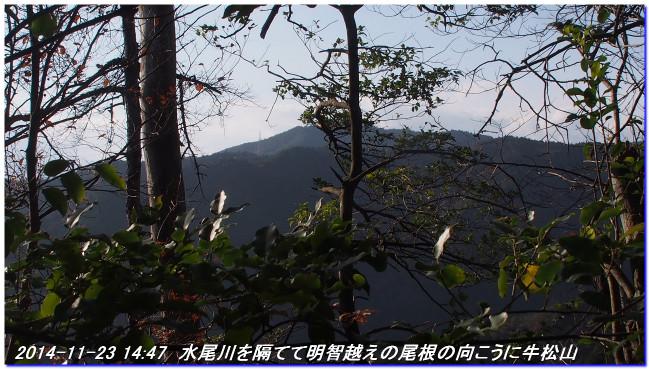 141123_nakaone_mizuo_02