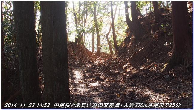 141123_nakaone_mizuo_03