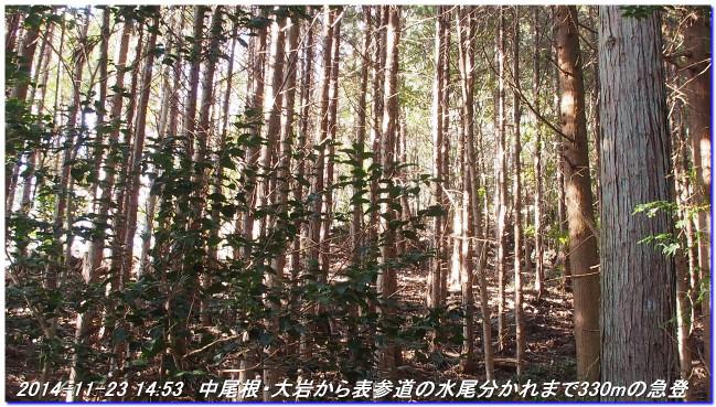 141123_nakaone_mizuo_04