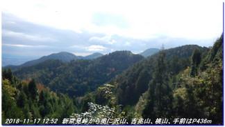 181117_sugisakanishione_shinkyomito