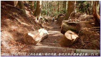 181208_nakaone_atagoyama_mizuo_029
