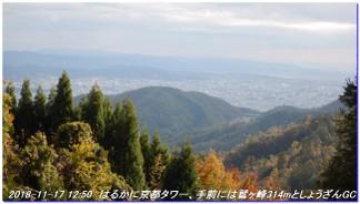 181117_sugisakanishione_shinkyomi_5