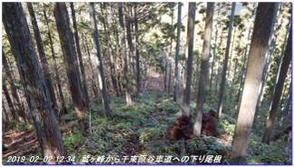190202hidaridaimonji_takagamine3z_6