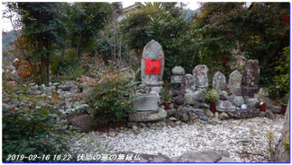 190216_kainan_fujishirosaka_kiim_15
