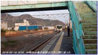 190216_kainan_fujishirosaka_kiim_17