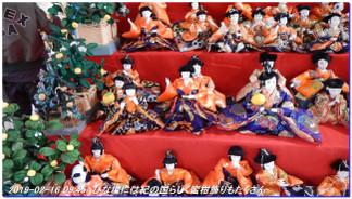 190216_kainan_fujishirosaka_kiimi_2