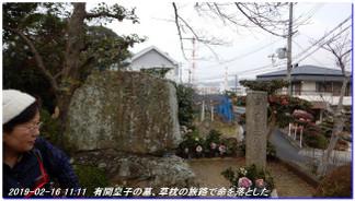 190216_kainan_fujishirosaka_kiimi_5