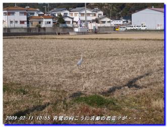 090211_kiiutihara_inami_017