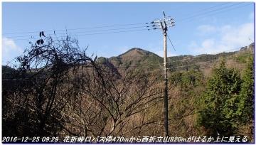 161225_hanaoretoge_nishioritateyama_004