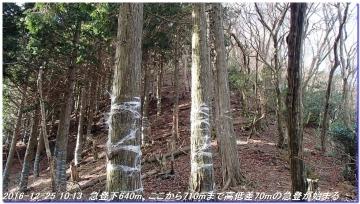 161225_hanaoretoge_nishioritateyama_010
