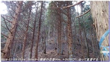 161225_hanaoretoge_nishioritateyama_018