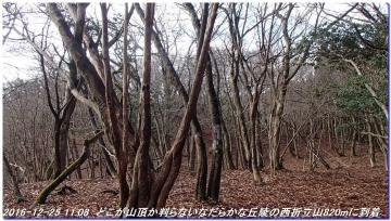 161225_hanaoretoge_nishioritateyama_022