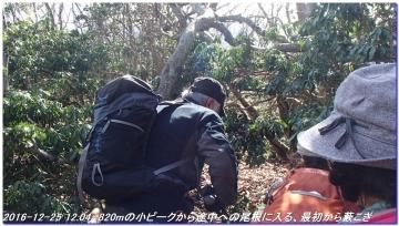 161225_hanaoretoge_nishioritateyama_027