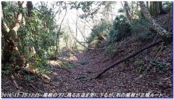 161225_hanaoretoge_nishioritateyama_031