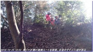 161225_hanaoretoge_nishioritateyama_033