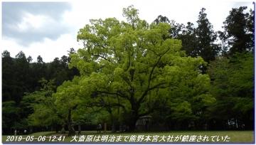 190501_03_0506_nakaheji_026