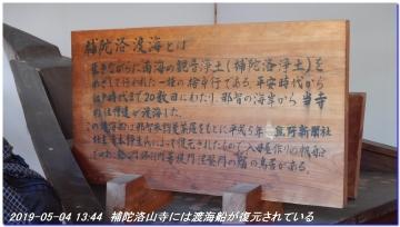 190504_gotobiki_hayatama_nati_018