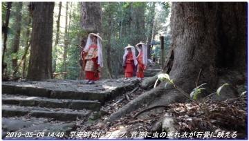 190504_gotobiki_hayatama_nati_024