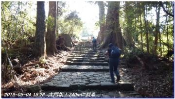 190504_gotobiki_hayatama_nati_030
