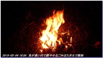 190504_gotobiki_hayatama_nati_052