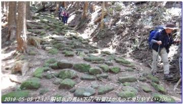 190505_ookumotori_sakuratyaya_025