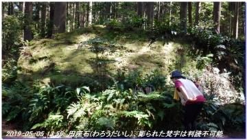 190505_ookumotori_sakuratyaya_032