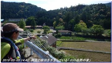 190505_ookumotori_sakuratyaya_035