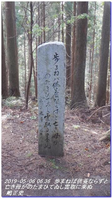 190506_kokumotori_dainitikoe_010