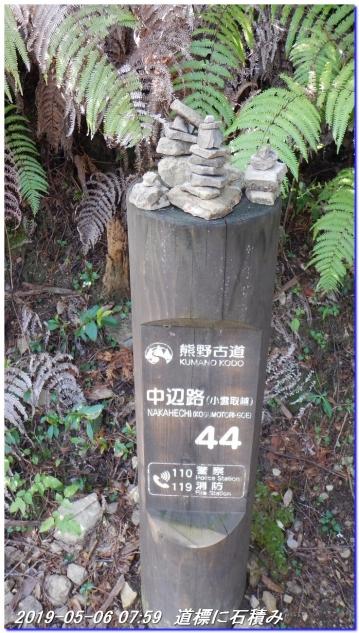 190506_kokumotori_dainitikoe_020
