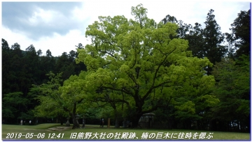 190506_kokumotori_dainitikoe_032