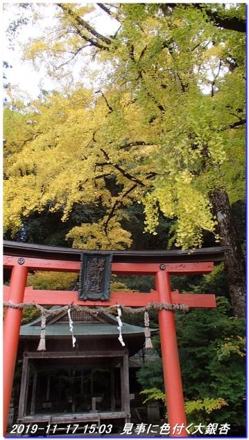 191117_takimatanotaki_ungetusaka_094