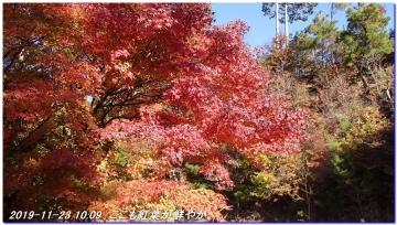 191123_ogurayama_komekaimiti_019